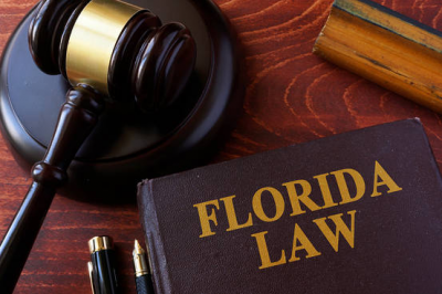 Protecting Legal Fraud in Florida Jan 22nd