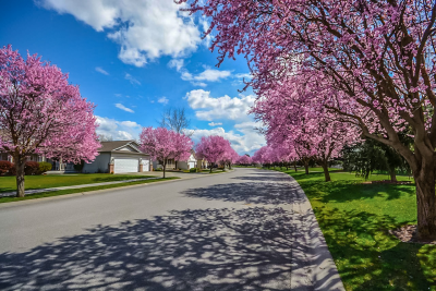 Top 3 Things Homebuyers Need to Know this Spring